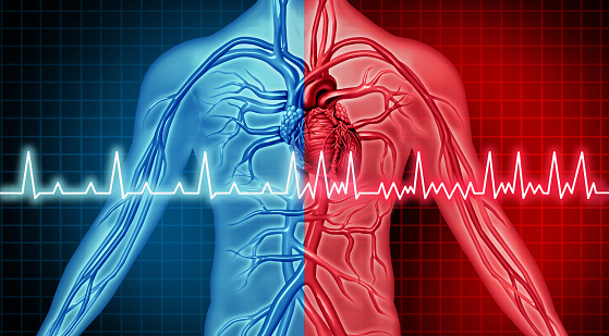 Intracardiac Echocardiography Electroanatomic Mapping Integration Effective at Treating AF